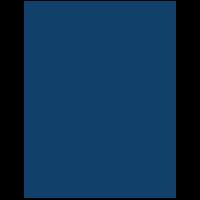 Foster Youth Success Initiative logo